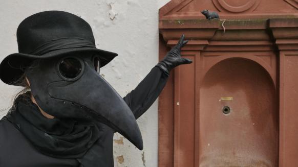Bild der Veranstaltung Die Pest in Ulm